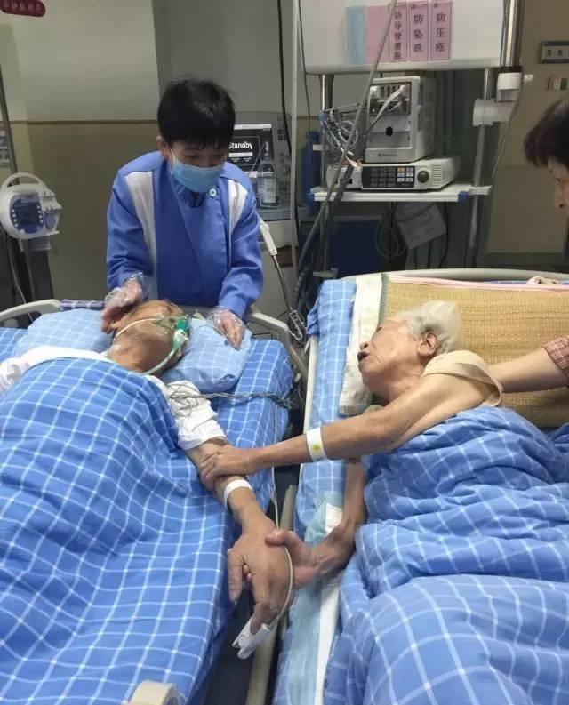 奶奶让数亿人泪崩你心中的爱情究竟是什么模样呢?